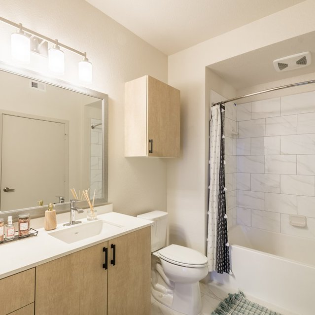 The Braydon - Spacious Bathroom With Bathtub And Large Vanity